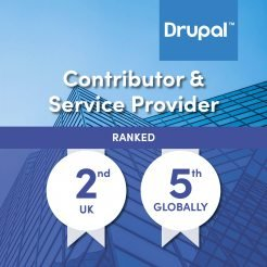 Graphic illustrating top Drupal development company